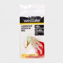 Westlake 3 Hook Luminous Hokkai 1, NO COLOUR/1