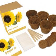 Grow It: Sunflowers Gift Box