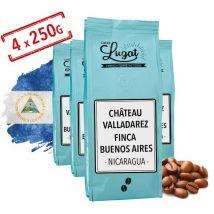 Coffee beans: Nicaragua - Château Valladarez (Finca Buenos Aires) - 1kg - Cafés Lugat - Nicaragua
