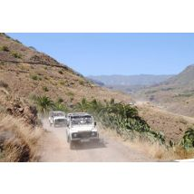 4x4 Safari + Camel Ride - From Las Palmas