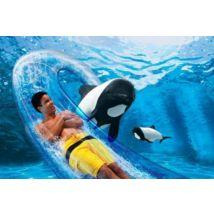 SeaWorld Parks - 2 Park - SeaWorld & Aquatica Ticket