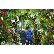 Kew Gardens - Standard Ticket
