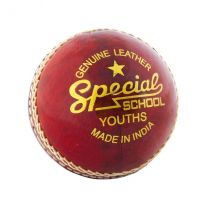 Readers Special School Cricket Ball Youths