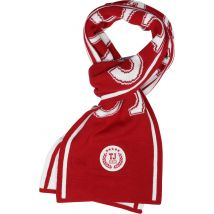 Tommy Jeans College scarf red