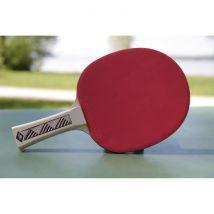 Donic Schildkröt Raquette de tennis de table Champs Line 300