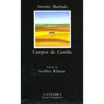 Campos de Casteilla (1907-1917)