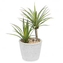 Yucca artificiel en pot H 24 cm - Vert - 0x24x0cm - Maisons du Monde