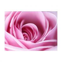 Artgeist - Papier peint - Rose rose 200x154 - Décoration des murs