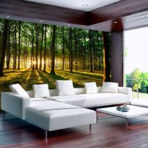 Papier peint - Spring: Morning in the Forest .Taille : 300x210 - Décoration des murs