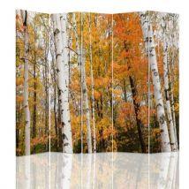 Feeby Paravent imprimé décoratif moderne, 5 pans deux faces, Forêt de bouleaux automnal 180x180 cm - Objet à poser