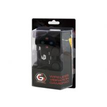 GEMBIRD JPD-WDV-01 - Manette de jeu - 12 boutons - sans fil - 2.4 GHz (pack de 2) - pour Sony PlayStation 2, Sony PlayStation 3 - Manette PC
