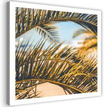 Tableau sur toile Image imprimée Art Cadre mural Canevas Feuilles de palmier 40x40 - Décoration murale