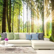 Papier peint - Forest Tales - Décoration, image, art | Paysages | Arbres et Forêt | - Décoration des murs