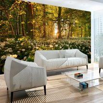Papier peint - Forest flora - Décoration, image, art | Paysages | Arbres et Forêt | - Décoration des murs