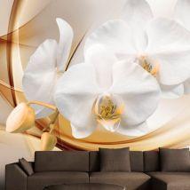 Papier peint - Orchid blossom - Décoration, image, art | Fleurs | Orchidées | - Décoration des murs