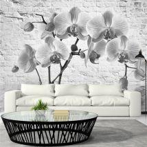 Papier peint - Orchid in Shades of Gray - Artgeist - 150x105 - Décoration des murs