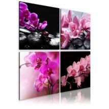 Tableau - Orchidées plus belles que jamais .Taille : 40x40 - Décoration murale
