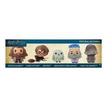 Coffret 5 Porte-clés Hangers Harry Potter 3D Voldemort - Porte-clés