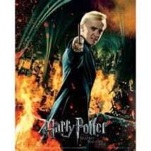 Poster em Papel Fotográfico GB Posters Harry Potter 7 Part 2 Draco Wand