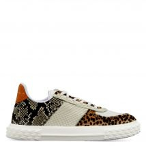 Giuseppe Zanotti BLABBER Womens Low top sneakers Multicolor