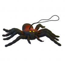 Araignée décorative
