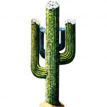 Décor de cactus en carton