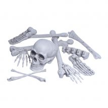 Os et crâne réalistes, décoratifs