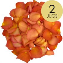 2 Jugs of Peach Rose Petals
