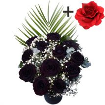 A single Red Silk Rose surrounded by 11 Black Roses