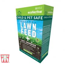 ecofective Natural Lawn Feed &  Root Enhancer